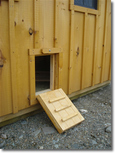 backyard chicken coops for maine and new hampshire. Black Bedroom Furniture Sets. Home Design Ideas